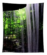Behind The Falls Tapestry