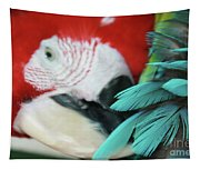 belle Ara Macao oiseaux tropicaux de Maui  Tapestry