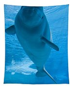 Beluga Whale In A Marine Park, Ontario Tapestry