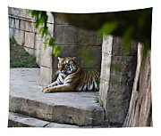 Bengal Tiger Resting Tapestry