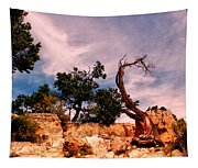 Bent The Grand Canyon Tapestry