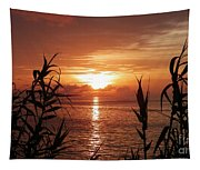 Bermuda Evening Tapestry