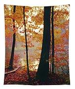 Bernharts Dam Fall 031 Tapestry