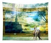 Beyond Tapestry