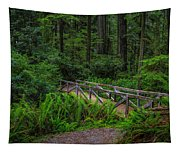 Beyond The Bridge Tapestry