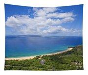 Big Beach Aerial Tapestry