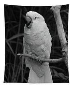 Big Bird Tapestry