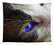 Big Blue Eyes Cat Tapestry