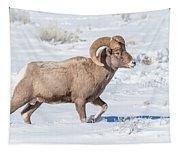 Big-horn Ram In Winter Tapestry