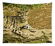 Big Kitty Cat Tapestry