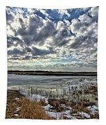 Big Marsh Spring Thaw 2 Tapestry