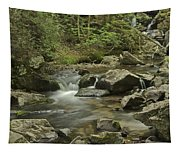 Big Pup Falls 2 Tapestry