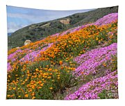 Big Sur Spring Tapestry