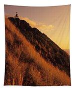 Biking At Sunset Tapestry