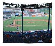 Bill Meyer Stadium, Aa Southern League Tapestry