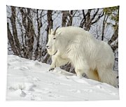 Billy Goat On The Move Tapestry