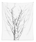 Birch Abstraction Study Tapestry