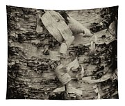 Birch Bark Detail Monotone Img_6361 Tapestry