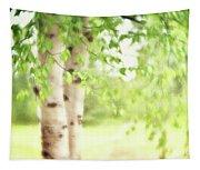Birch In Spring Tapestry