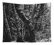 Birch Tree Forest Tapestry