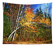 Birch Trees - Autumn Tapestry