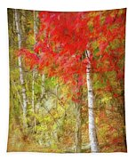 Birch Trees In Autumn Tapestry