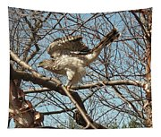 Birched Cooper 1 Tapestry