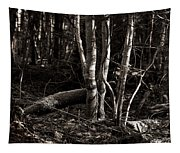 Birches In The Wood Tapestry