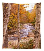 Birches On The Kancamagus Highway Tapestry