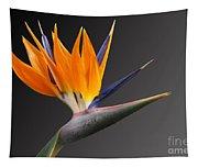 Bird Of Paradise #3 Tapestry
