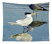 Bird - Tern - Reflection Tapestry