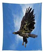 Birds 53 Tapestry