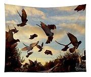 Birds And Fun At Butler Park Austin - Birds 1 Tapestry