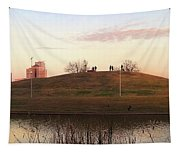 Birds And Fun At Butler Park Austin - Silhouettes 1 Panorama Tapestry