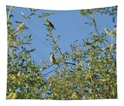 Birds At Peters Canyon Tapestry