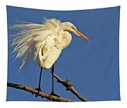 Birds - Great Egret Tapestry