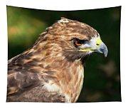 Birds Of Prey Series 5 Tapestry