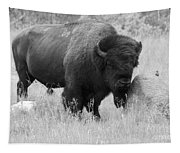 Bison And Buffalo Tapestry