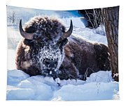 Bison At Frozen Dawn Tapestry