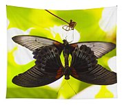 Black And Red Butterflies Tapestry