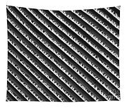 Black And White Abstract Lines Tapestry