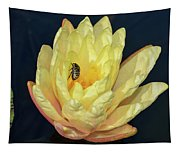 Black And White Beetle On Yellow Pond Lily Tapestry