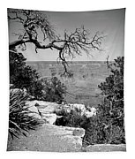 Black And White Grand Canyon 2 Tapestry