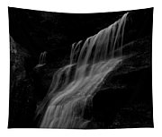 Black And White Hidden Falls Tapestry