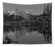 Black And White Medicine Lake Tapestry