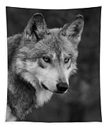 Black And White Mexican Wolf #4 Tapestry