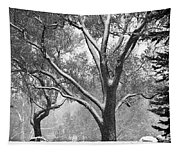 Black And White Snowy Landscape Tapestry