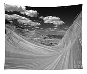 Black And White Swirling Landscape Tapestry