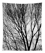 Black And White Tree Branches Silhouette Tapestry