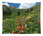 Black Bear Pass Landscape Tapestry